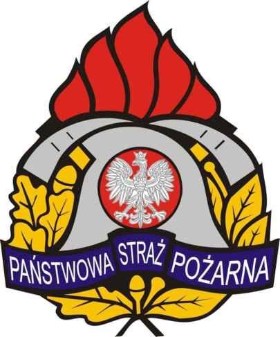 20081010 logo psp