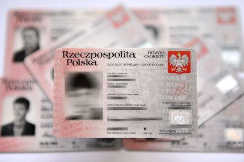 20100101 dowod