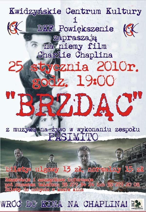 20100118 brzdac