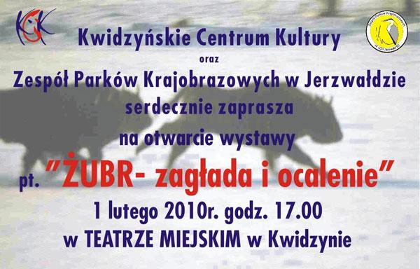 20100128zubr