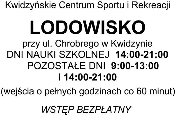 20110117 Lodowisko