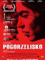 20110401 pogorzelisko