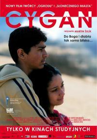 23 04 2013 cygan