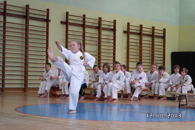 22 10 2013 karate1