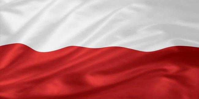 04 11 2013 flagi
