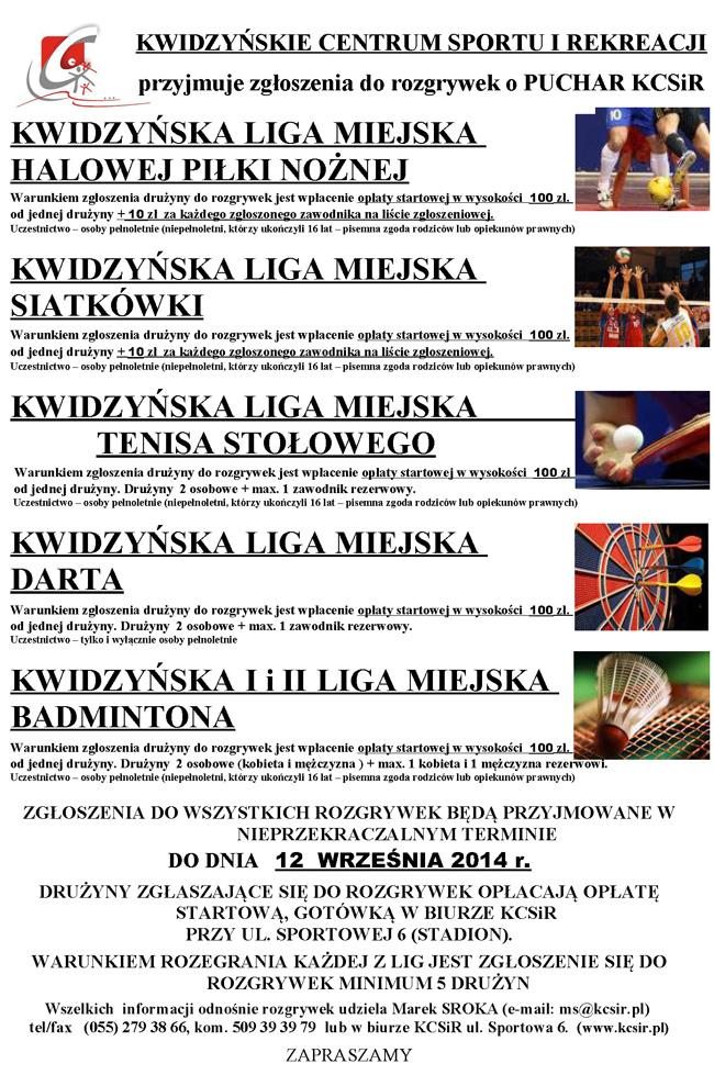 25 08 2014 liga2