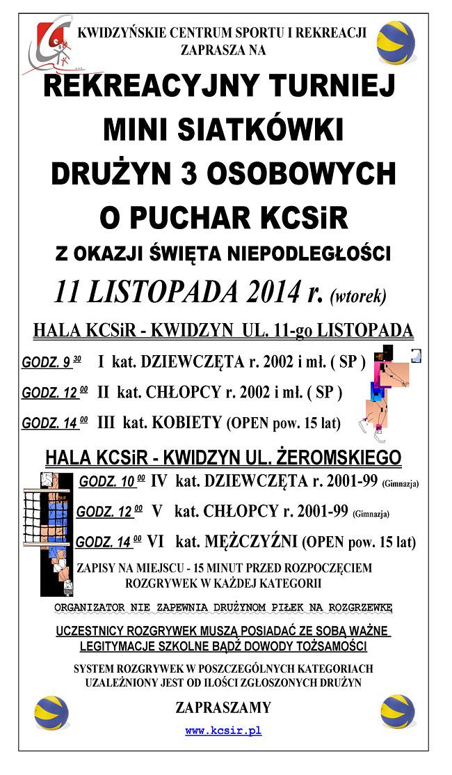 29 10 2014 siatkowka2