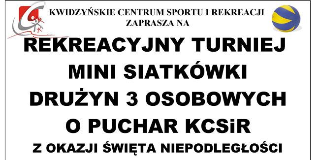 29 10 2014 siatkowka1