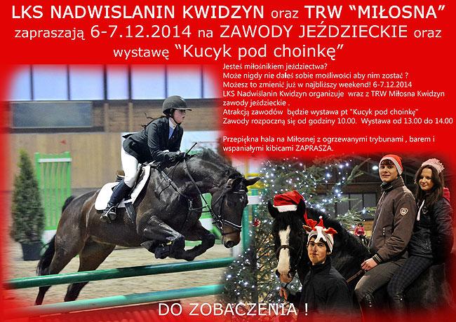 02 12 2014 kucyki2