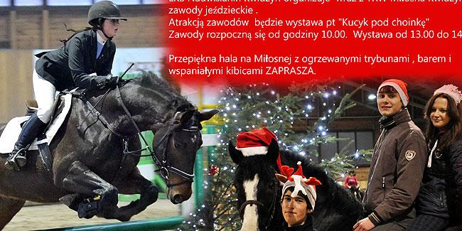 02 12 2014 kucyki1