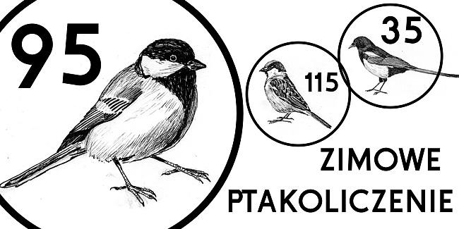 16 ptakoliczenie1