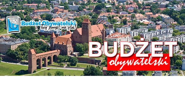 19 06 2015 budzet2