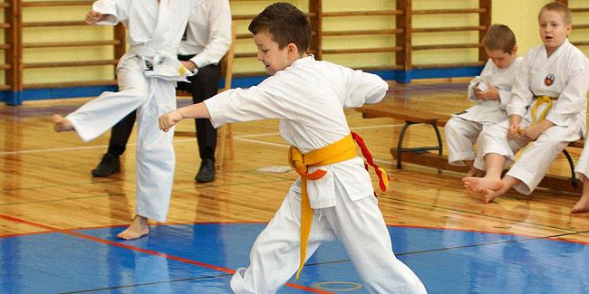 15 10 2015 karate1