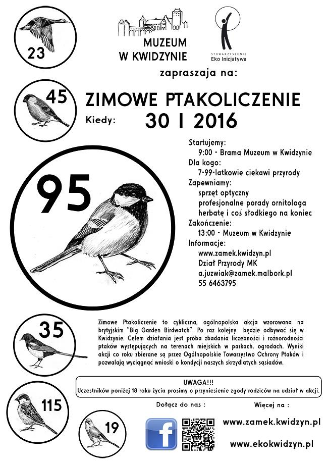 22 01 2016 ptaki2