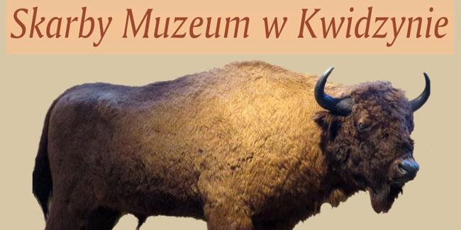 11 10 2017 muzeum2