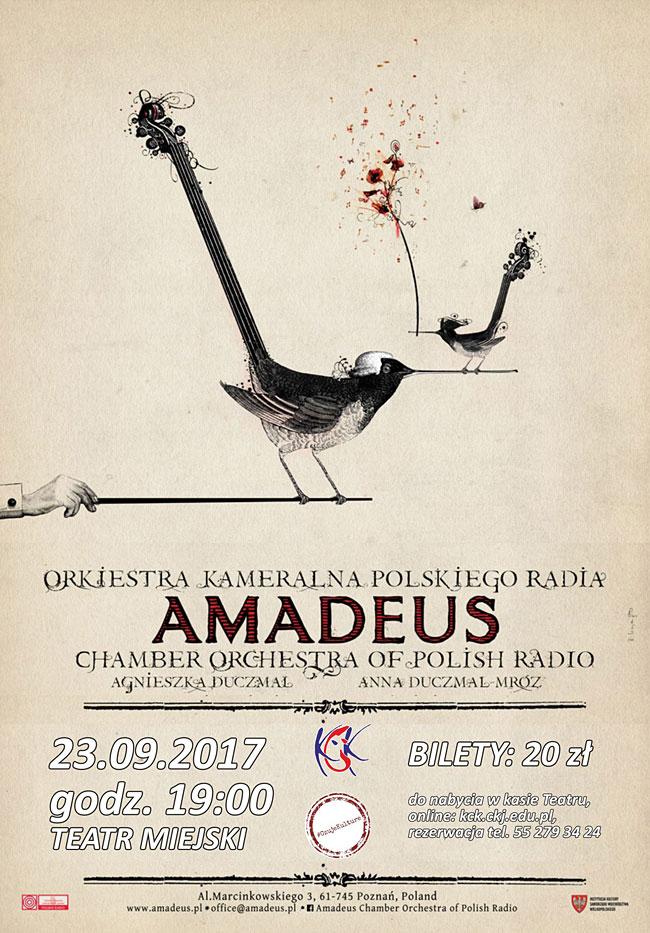 30 08 2017 amadeus2