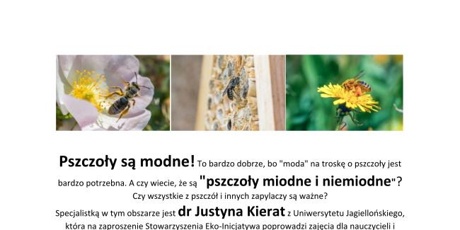 18 07 2019 pszczoly miodne i niemiodne
