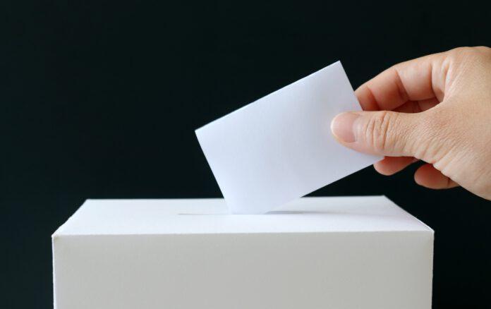 urna wyborcza wybory